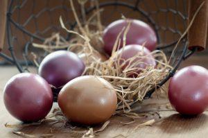 muna, kananmuna, pääsiäinen